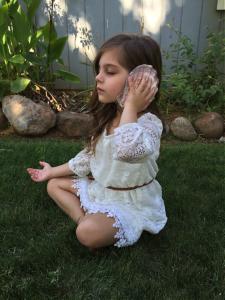 Shell Meditation Photo